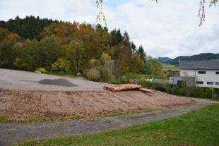 Unterharmersbacher Ortschaftsrat diskutiert über Umgang mit Freiflächen