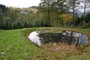 Löschwasserkonzept für Oberentersbach ist ausgearbeitet