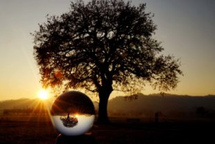 Naturfotograf blickt in Kristallkugel