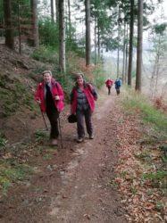 Wander- und Freizeitverein beschließt Wanderjahr