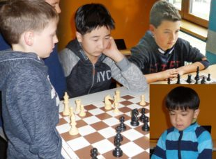 Alle drei Zeller Schachmannschaften siegten am 3. Spieltag
