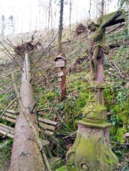 Sturmschaden an Lehmanns-Becke Kreuz