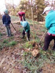 Waldkinder zeigen Verantwortung