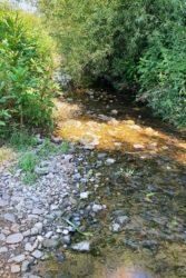 Ab sofort Wasserentnahme aus Bächen und Flüssen verboten