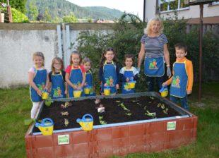 Gemüsebeete für Kindergarten-Kids