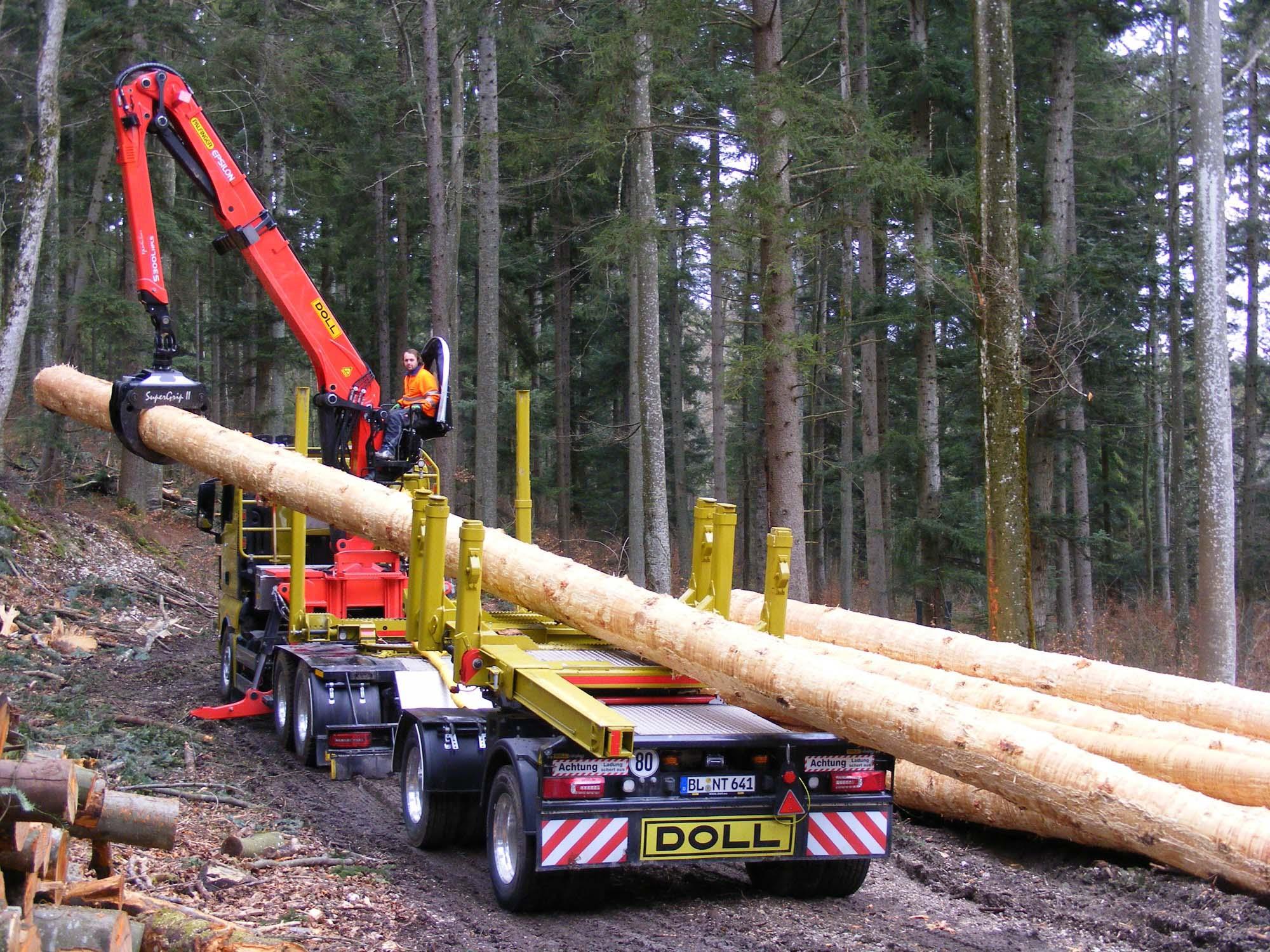 2020-5-8-Oppenau-Ilse und Manfred Oestreich-Holztransport-Nagel 200314e