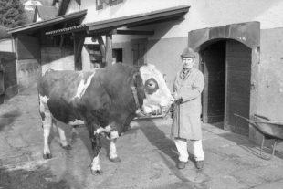Gemeinde Oberharmersbach verkauft das Hofgut Kornmayer