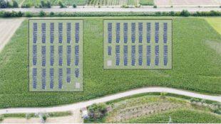 Drei Freiflächen-Photovoltaikanlagen entlang der Bahnlinie geplant