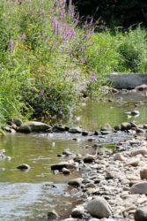 Verbot der Wasserentnahme aus Bächen und Flüssen besteht weiter