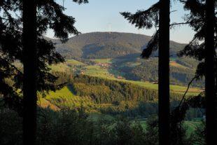 Baden-Württembergische Meisterschaften  im Trailrun finden am 3. Oktober in Zell statt