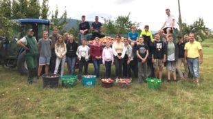 Kinder und Jugendliche starteten Apfelernte auf dem Golfplatz