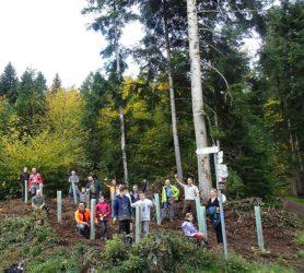 Erste Setzlinge im Rahmen der Aktion  »1.000 Bäume für Zell a. H.« gepflanzt