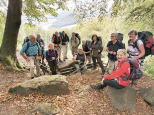 Fünf Etappen auf dem Neckarsteig