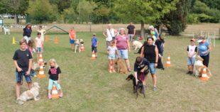 Wie Hunde, Pferde und Kinder und Erwachsene Freunde werden