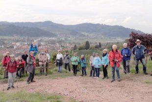 Herrliche Dienstagswanderung durch die Gengenbacher Reben