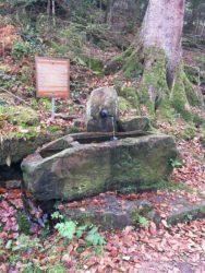 Die Geschichte vom Bären-Vitt und vom Schwedenbrunnen