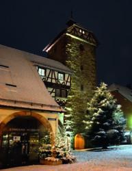 Tannenbaumstädtle verbreitet auch in diesem Jahr wieder vorweihnachtlichen Glanz