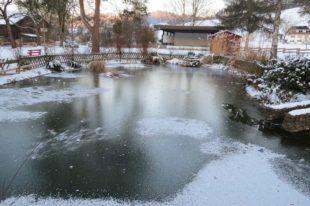 Winterimpressionen aus dem Kurpark beim Fürstenberger Hof