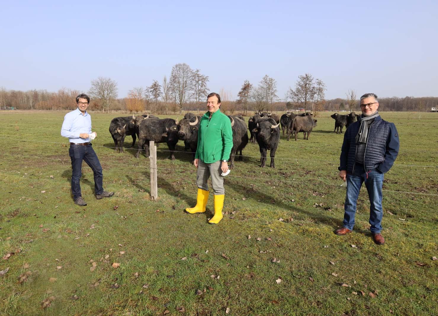 2021-2-26-OG-sp-Grüne Wasserbüffelprojekt-Thomas Marwein