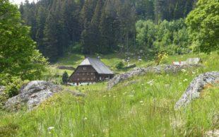 Höfe für Biologische Vielfalt