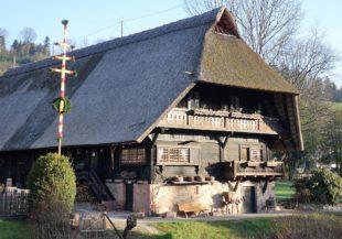 Osterpalmen am Fürstenberger Hof