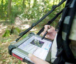 Bei Bundeswaldinventur werden auch DNA-Proben genommen