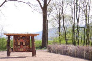 2021-4-23-Landratsamt Ortenaukreis-Blühender Rastplatz_Insektenhotel Totholzhecke
