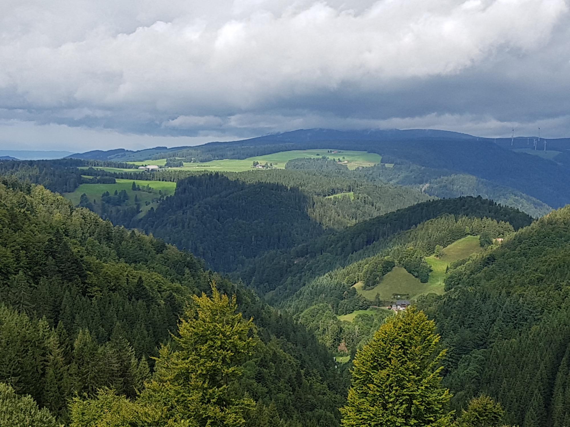 2021-4-29-Mühlenbach-privat-FVS-Forst-20170906_113313