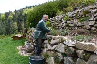 Gartengestaltung statt Corona-Stillstand