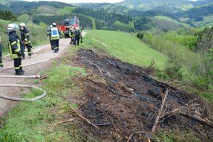 Starker Wind hatte eine Feuerstelle von Waldabfällen wieder entfacht