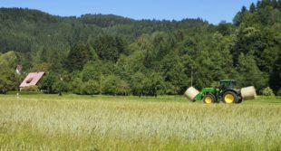 Wenn Landwirte zu Landschaftsgrafikern werden, läuft die Heuernte
