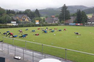 FVU-Spieler absolvieren Workout mit Personal-Trainer Antonio Servidio