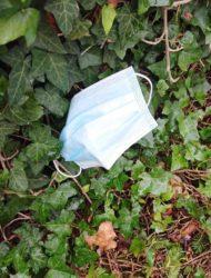 Ein neues Müllproblem im Gebüsch