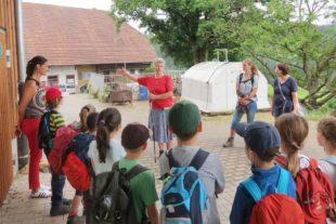 Der erste Unterricht im grünen Klassenzimmer