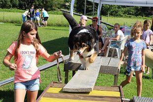 Spaßrallye auf dem Hundeplatz
