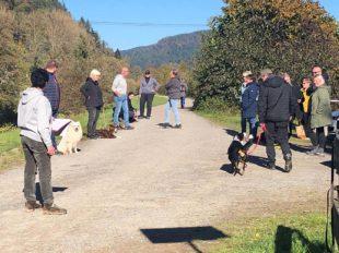 Erfolgreiche Herbstprüfungen beim HSV Biberach-Zell e.V.